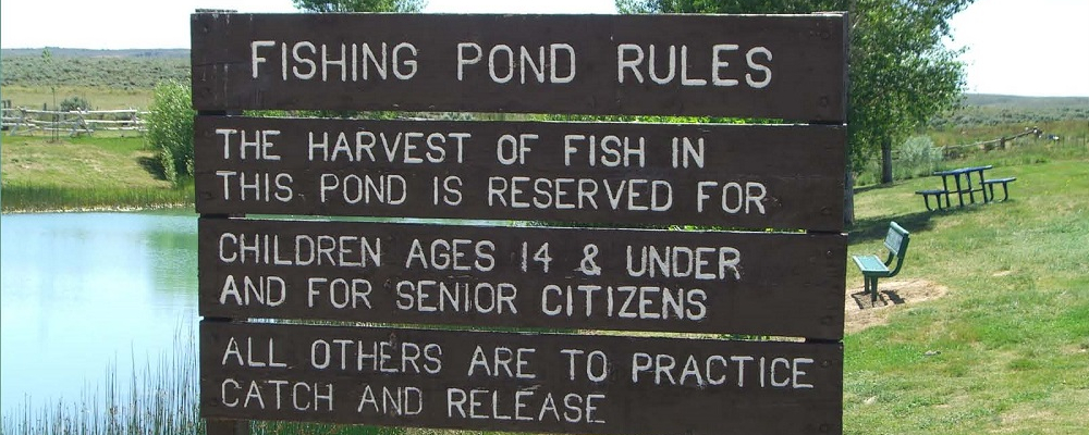 Youth Fishing Pond Sign