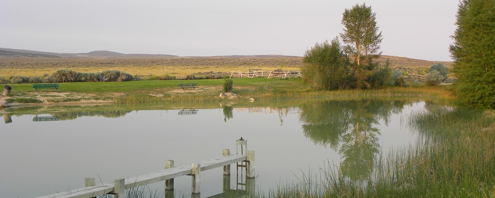 Youth Fishing Pond