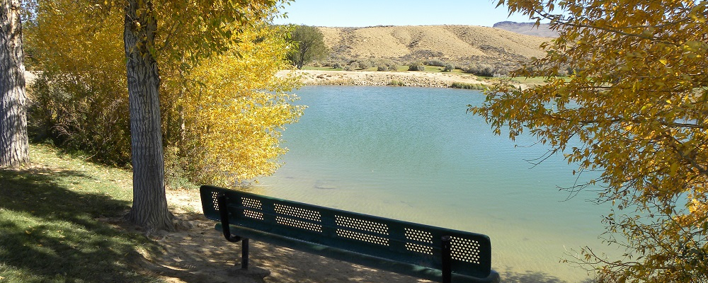 Bench at Youth Fishing Pond